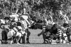 Rugby-5366