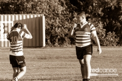 Rugby-5373