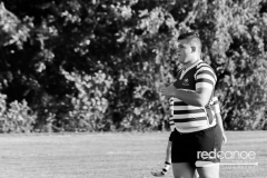 Rugby-5376