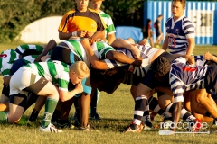Rugby-5382