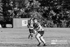 Rugby-5389