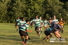 Rugby-5390