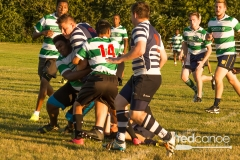 Rugby-5392